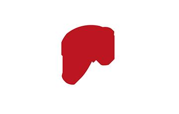 Logo Faire Mouvoir